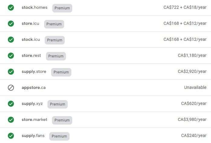 Premium Domain Names for Store
