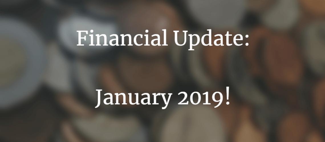financial update jan 2019